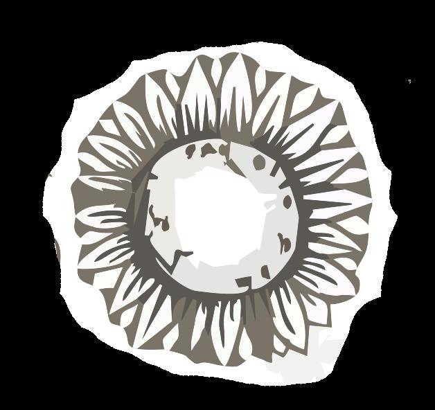 Šedé logo DD Česká Lípa
